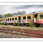 Trenitalia: l'acquisto di un biglietto on-line